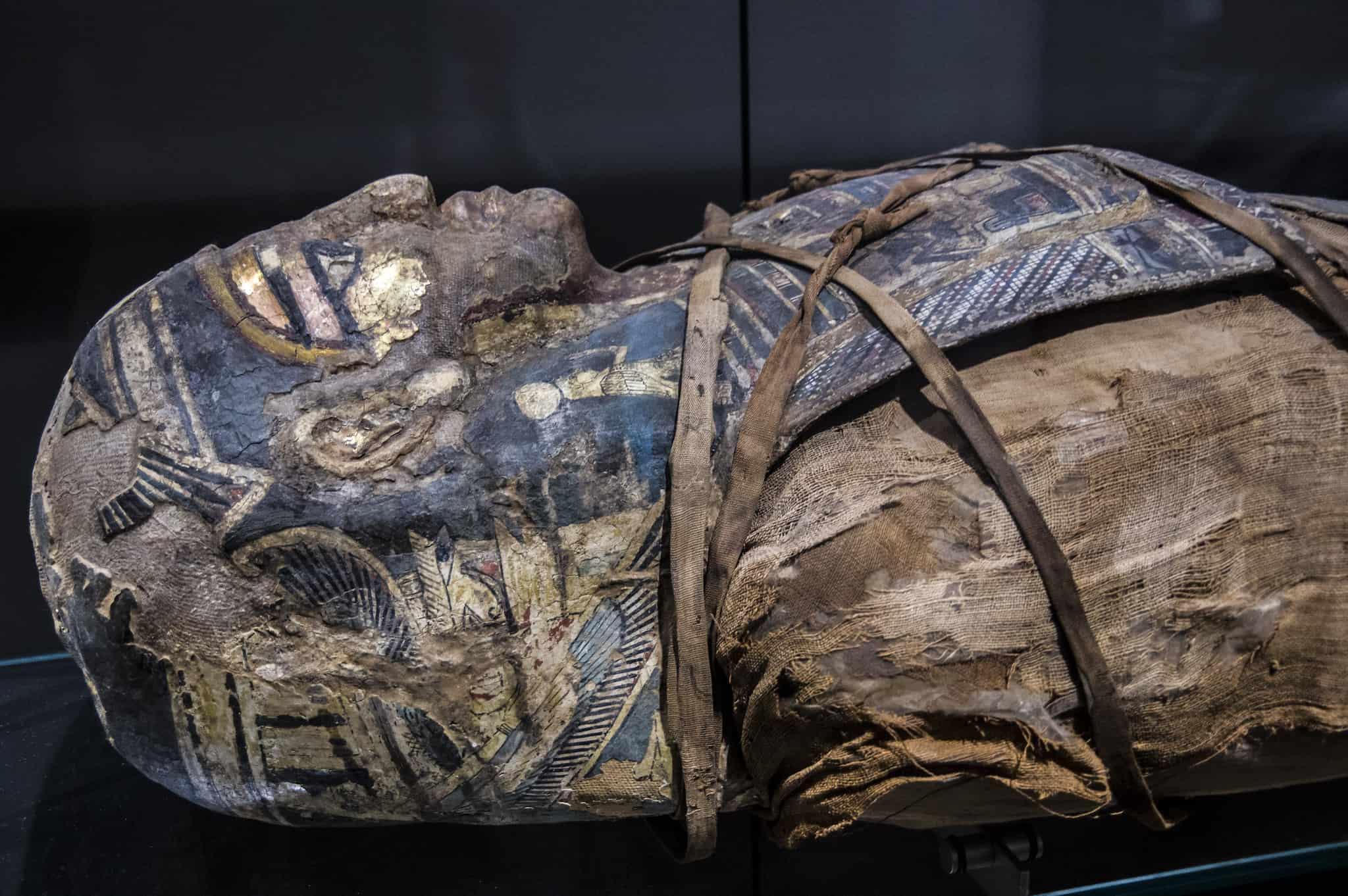 guida al museo egizio di torino